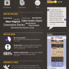 Infographic on Value of Infographics for Nonprofits