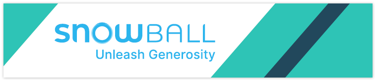 Snowball is one of the best crowdfunding platforms for growing nonprofit organizations.
