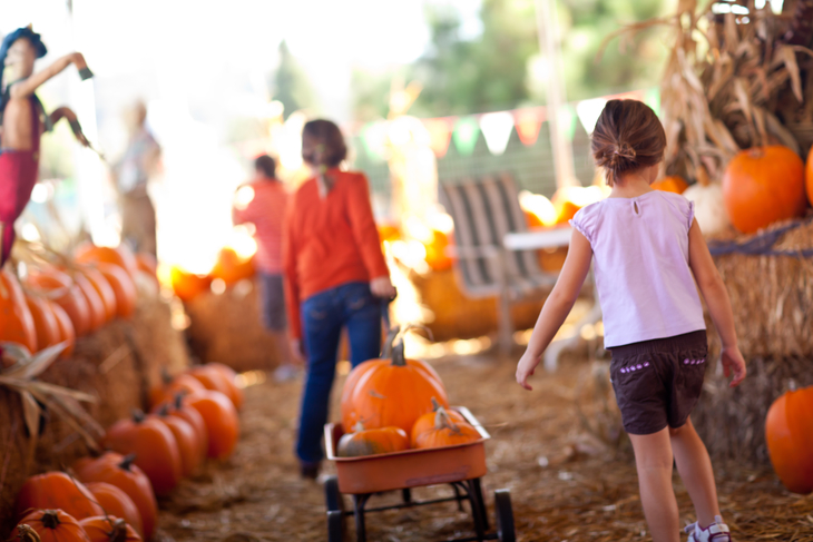A fall festival is a great holiday fundraising idea for schools.