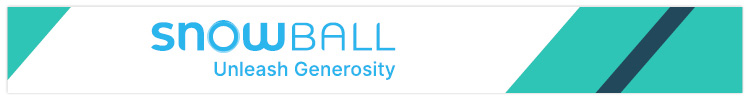 Snowball is a great virtual church software provider for fundraising.
