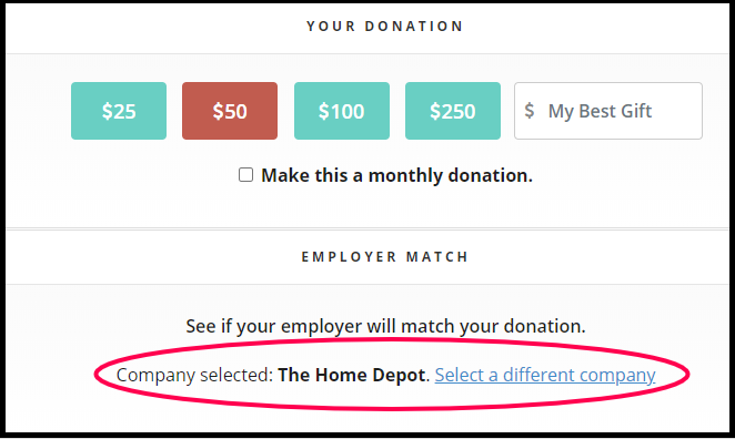 This photo shows the RaiseDonors donation form with a company selected.