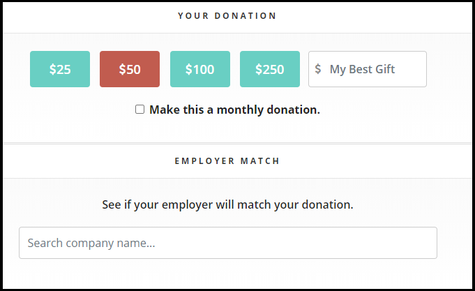 This image shows the RaiseDonors donation page